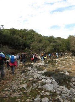 Petit Hike tour Afbeelding 48 - Als Groep Op Reis