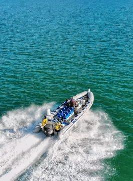 Rib Speed Speed Boat Summer Powerboat Fast Boat 3851516 - Als Groep Op Reis