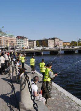 Stockholm vissen - Als Groep Op Reis